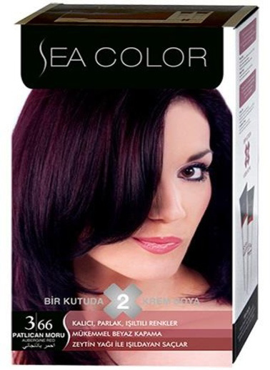 Sea Sea Color 2 Li Saç Boyası 3-66 Mor